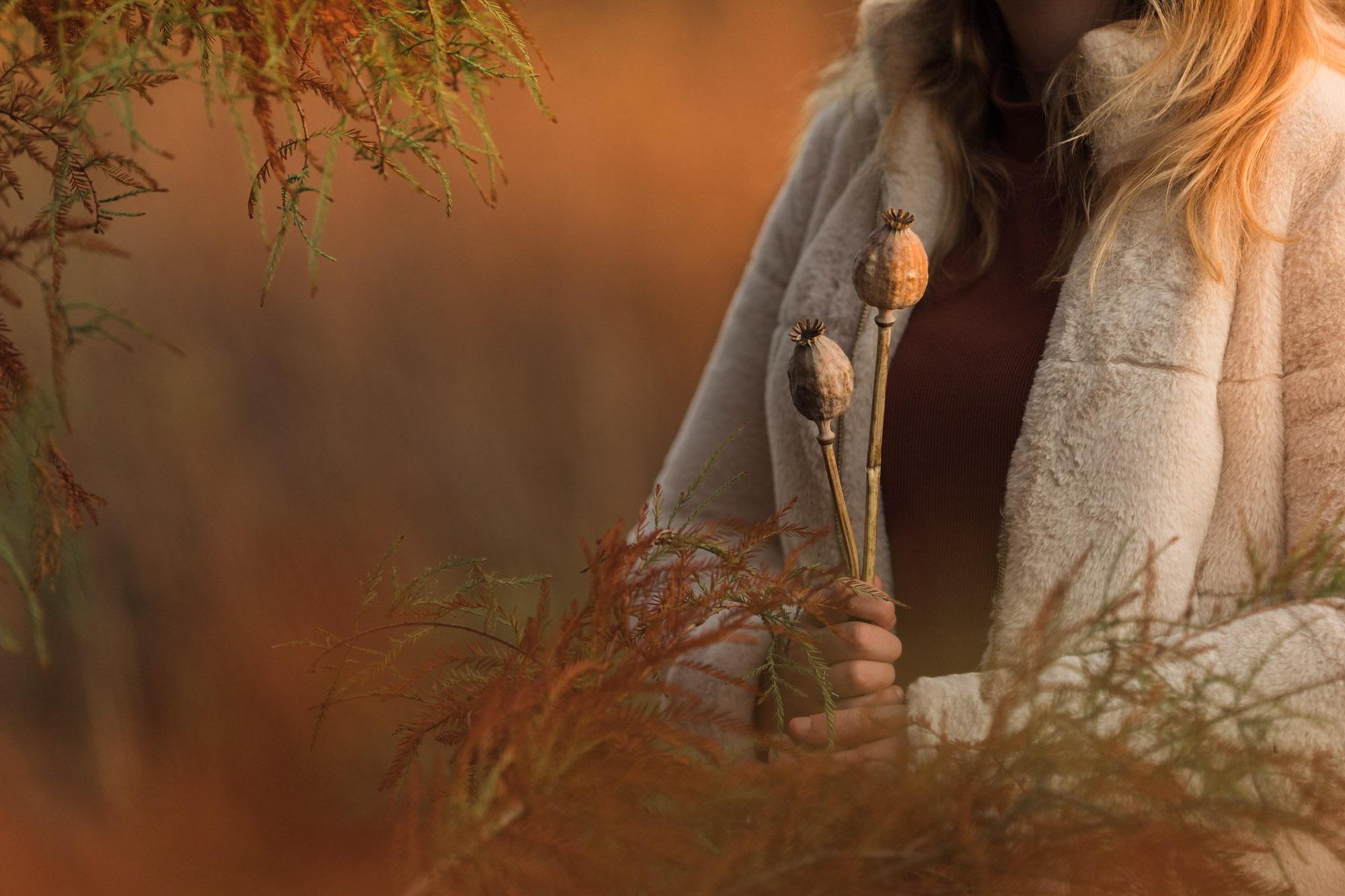 herfst sfeerfoto met klaproos zaaddozen tijdens gouden uur door Mayra Fotografie